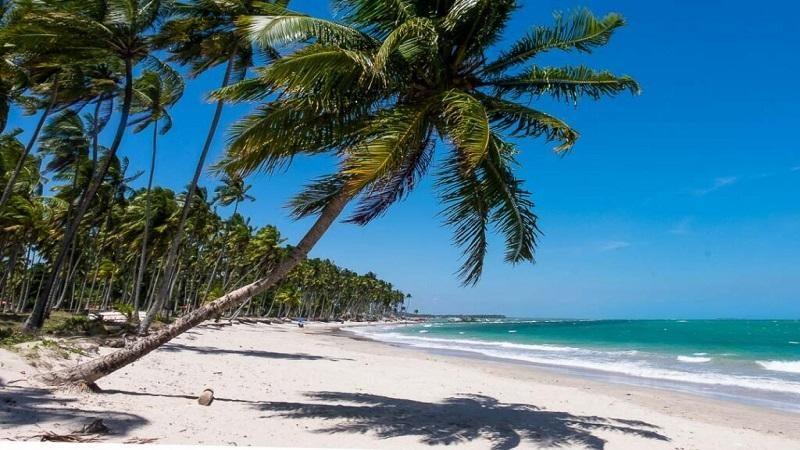 Praia dos Carneiros 13