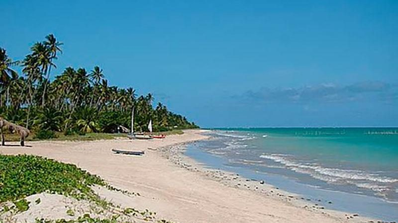 passeios em alagoas maceio Praia Sonho Verdee 5