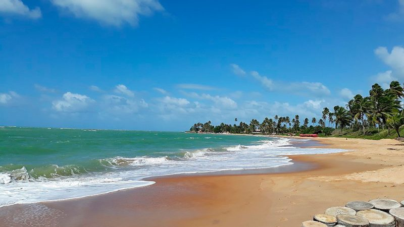 Passeios em Alagoas Maceió Praia Do Sonho Verde 10