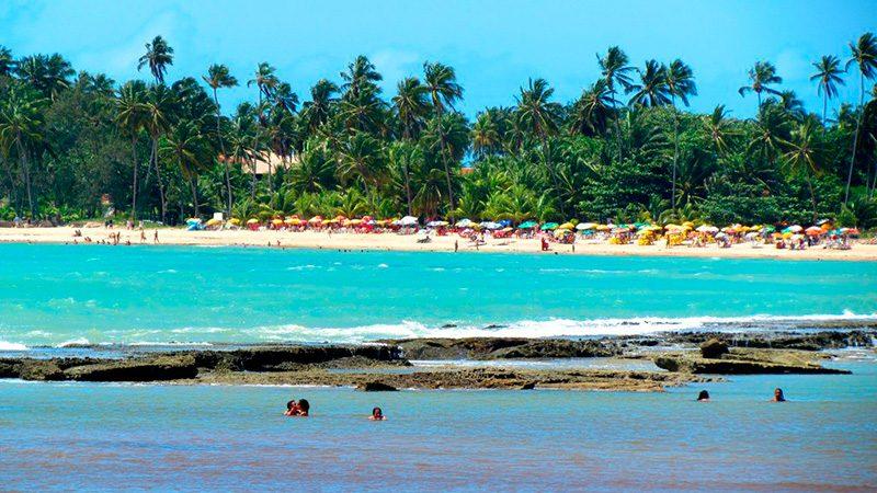 Passeios em Alagoas Maceió Praia Do Sonho Verde 11