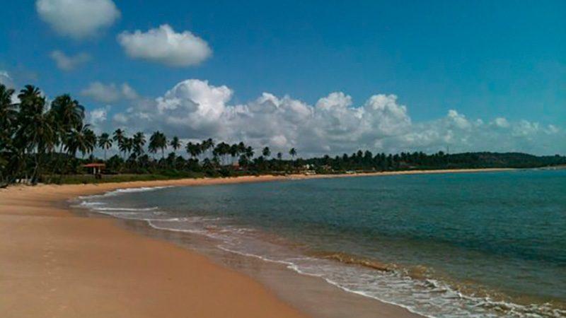 Passeios em Alagoas Maceió Praia Do Sonho Verde 12