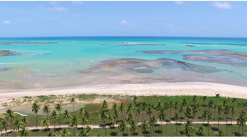 Passeios em Alagoas Maceió Praia Do Sonho Verde 4