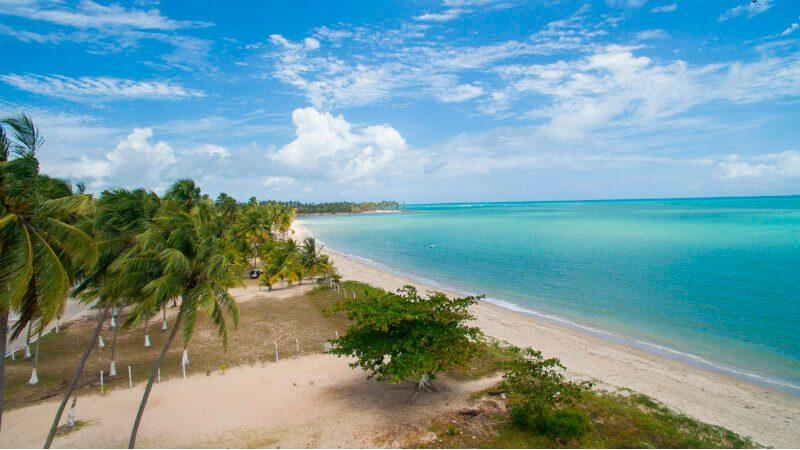 Passeios em Alagoas Maceió Praia Do Sonho Verde 07