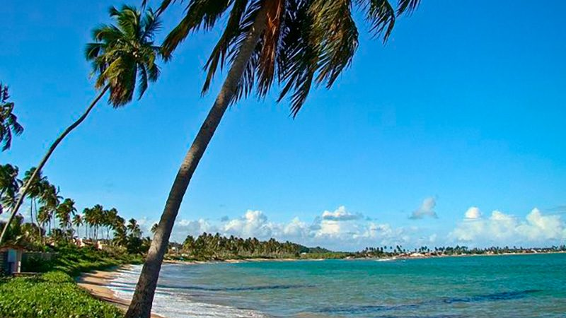 Passeios em Alagoas Maceió Praia Do Sonho Verde 09