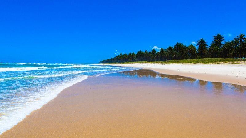 praia do frances maceio alagoas 03