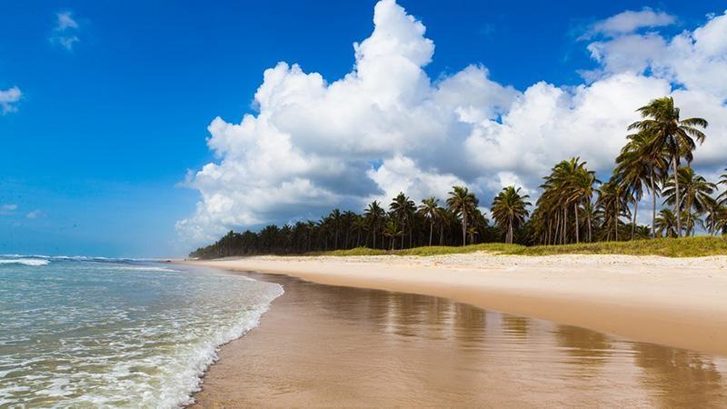 praia do frances maceio alagoas 04